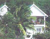 green roof inn in carriacou